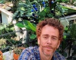 Nando Reis denuncia corte de árvores